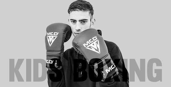 Kids Boxing Gloves Image